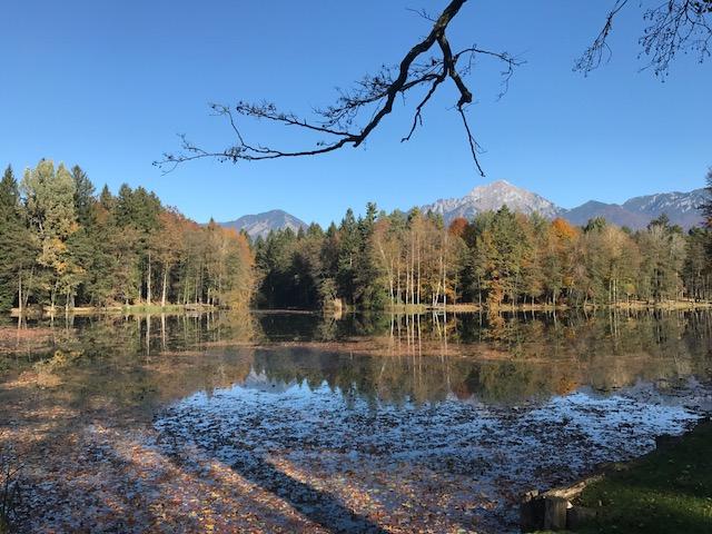 Widoki w Krajni (20 km od stolicy Słowenii)